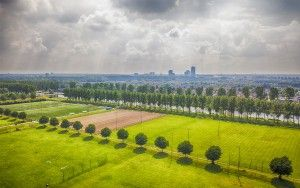Almere City FC training ground