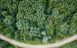 Winding road from my drone
