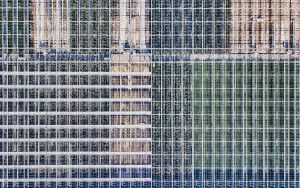 Glasshouse patterns from my drone