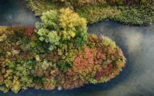 Top-down autumn island