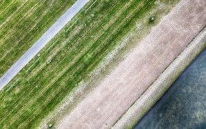 Top-down abstract from my drone