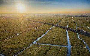 Flat fields around Weesp during sunset