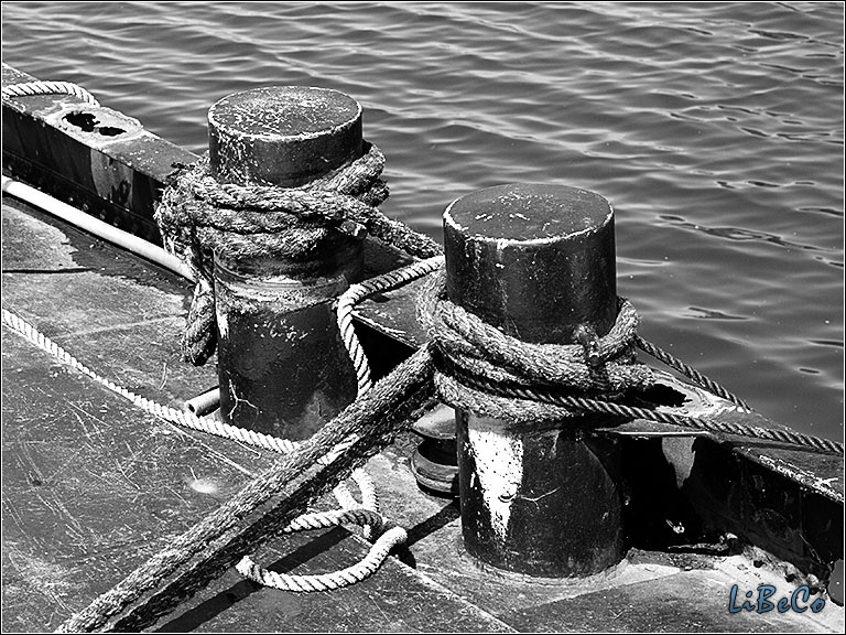 Ropes in black & white