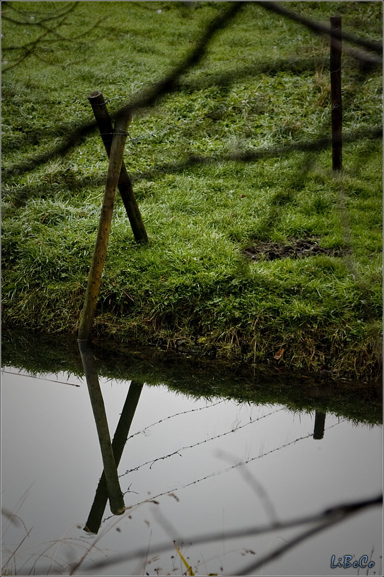 Barbed wire reflection