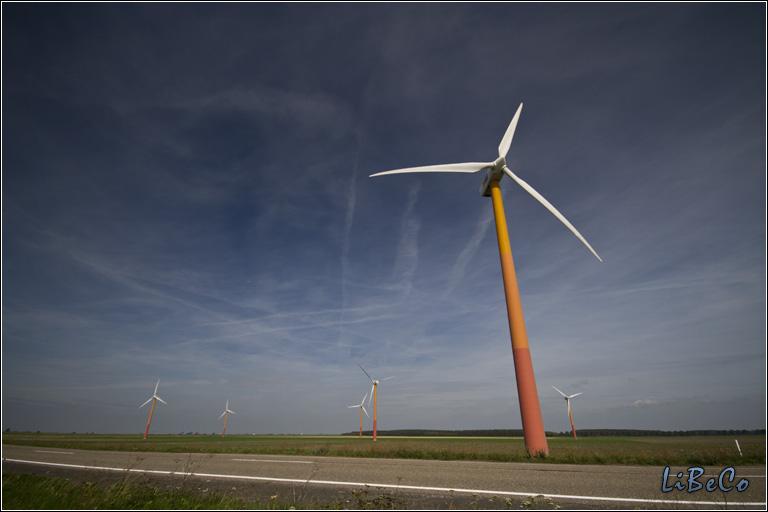 Windmills from IJmeerdijk