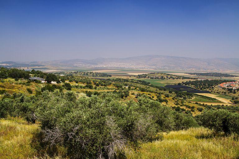Mountains near Zippori