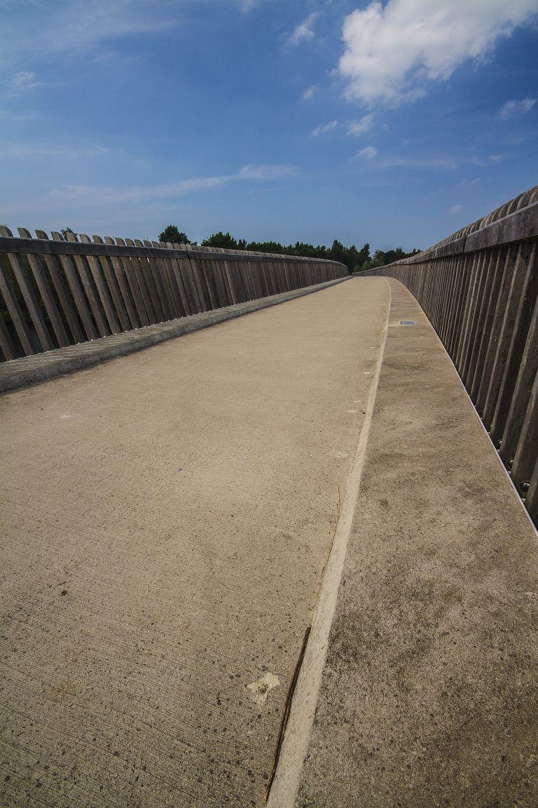 Bridge near Oostvaardersplassen