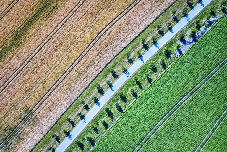 Patterns everywhere from my drone