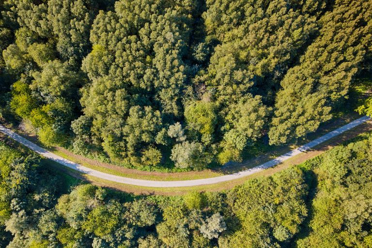 Late summer top-down drone picture of bending road