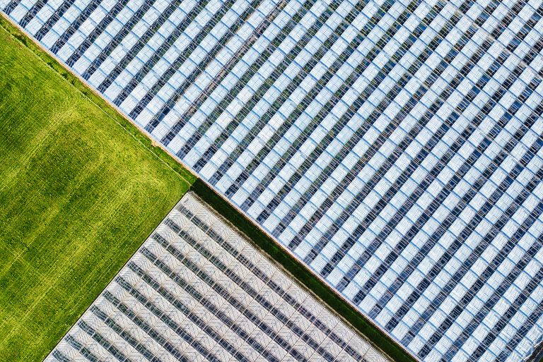 Abstract drone picture of glasshouses
