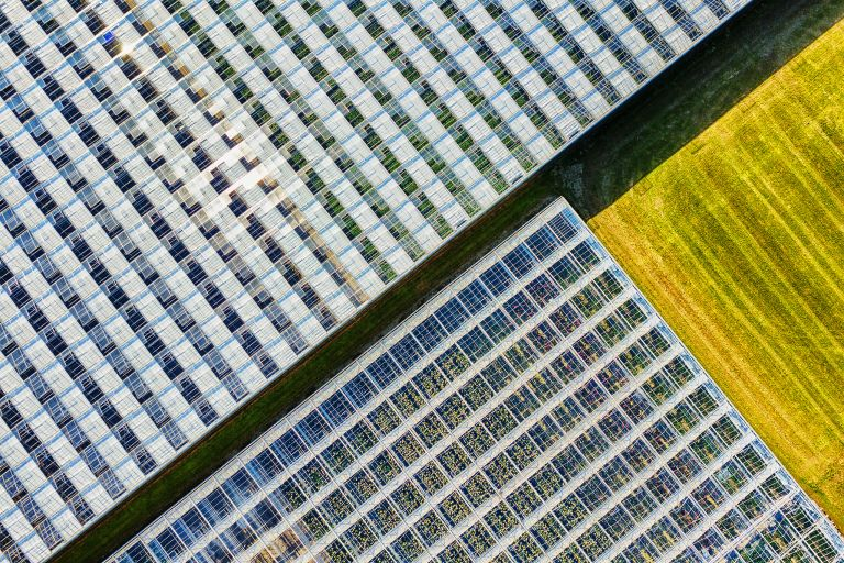 Abstract glasshouses drone picture