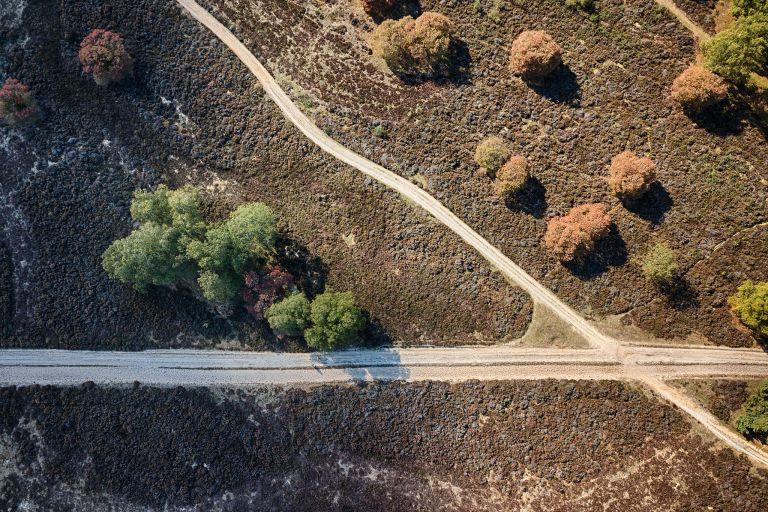 Crossroads on Bussumerheide