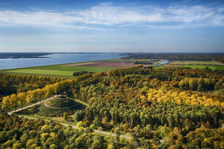 Groups of yellow trees near Almere Boven