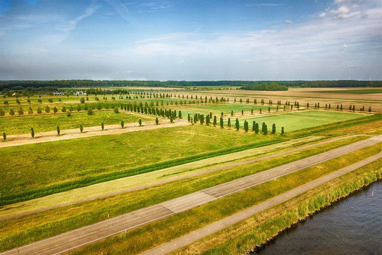 Field next to lake Gooimeer